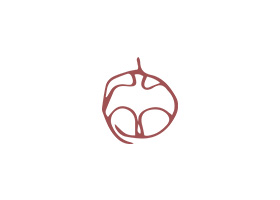Logo réalisé pour Albane Deschamp